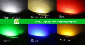 Application LED Outdoor Light WAHLL Lighting