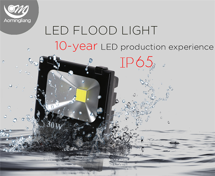 LED Floodlight details1