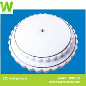 Ceiling Light Cake
