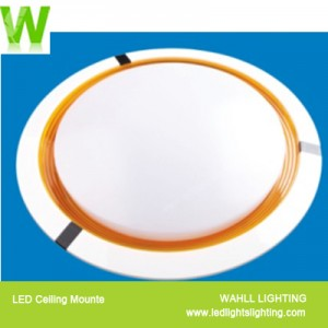 Ceiling Light Concentric Circles