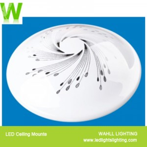 Ceiling Light Flame
