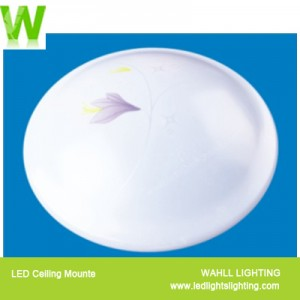 Ceiling Light Lily Star