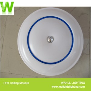 Ceiling Light Middle Sea