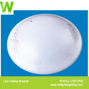 Ceiling Light Violet